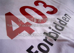 일본 히트 상품 페이크 시쓰루 티셔츠